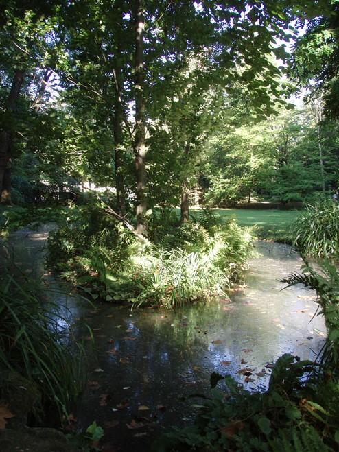 Visite du jardin Albert Kahn Etang10