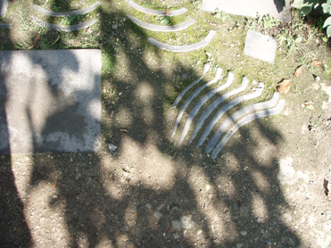 Visite du jardin Albert Kahn Idae_c11