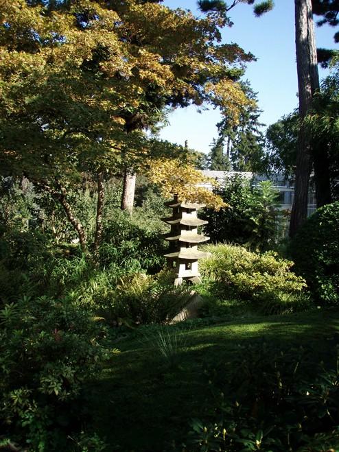 Visite du jardin Albert Kahn Lanter10
