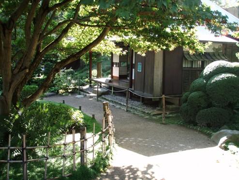 Visite du jardin Albert Kahn Maison11