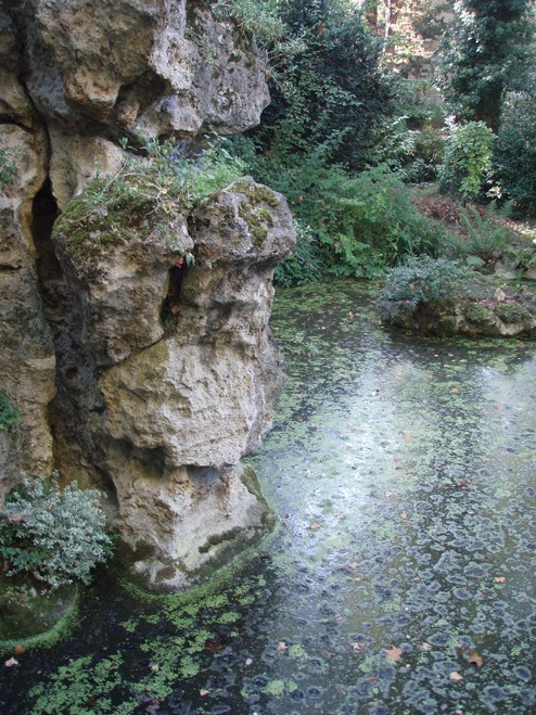 Visite du jardin Albert Kahn Pierre10