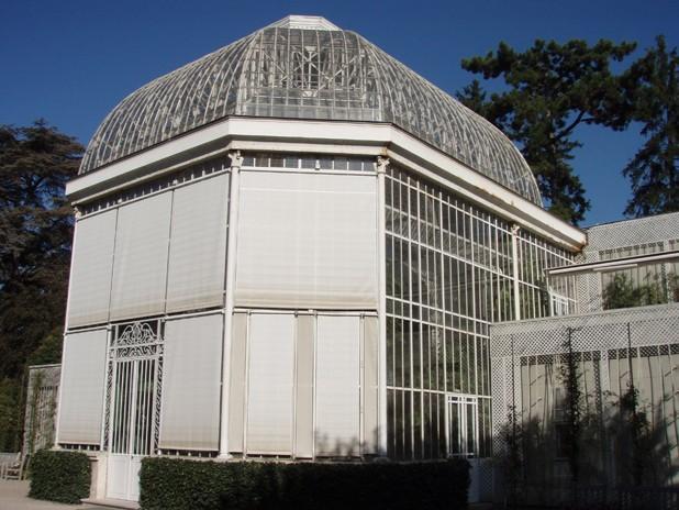 Visite du jardin Albert Kahn Serre10