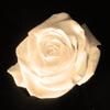 Modèle possible pour la fiche de liens Rose-l10