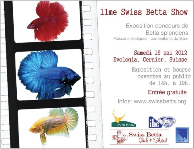 11me Swiss Betta Show, Cernier: 18-20 mai 2012  Flyer-10