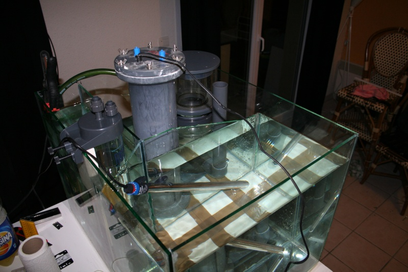 """Mon récifal cubique de 300 litres """"dendobates32"""" Img_2014"""