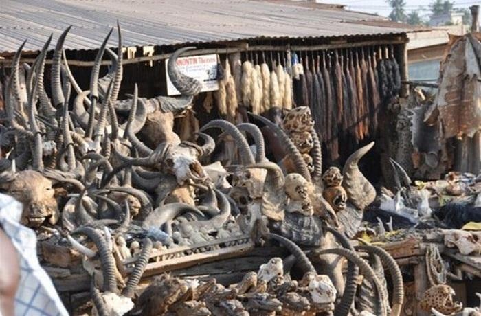 Akodessewa : le marché fétiche des sorciers Akodes10