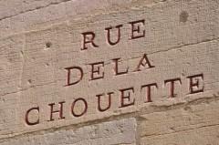 La Chouette ésotérique de Dijon Chouet12
