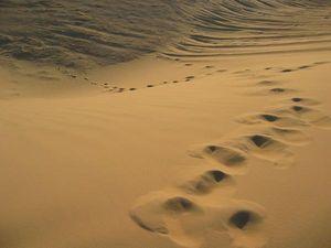 Absence de mon Ange GARDIEN  Desert11