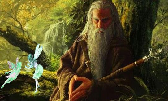 différentes méthodes de divination chez les Celtes Druide11