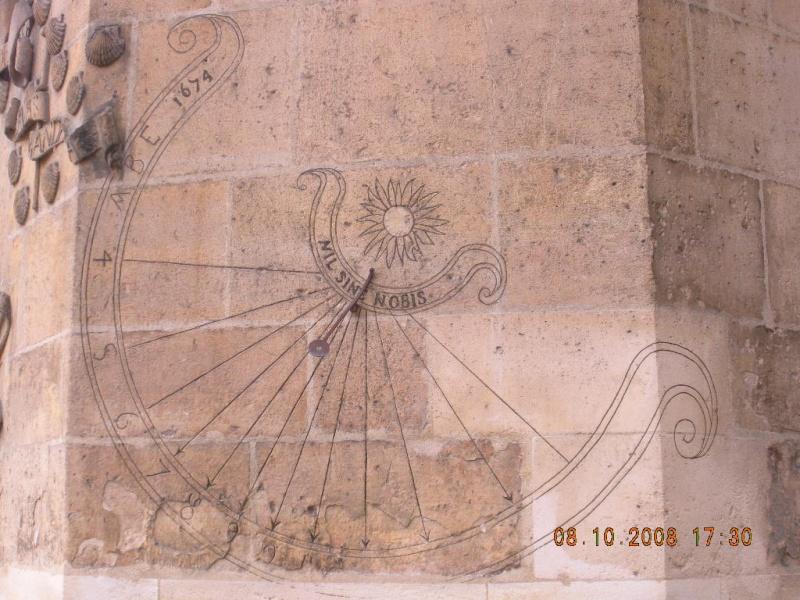 Ange Dscn1510