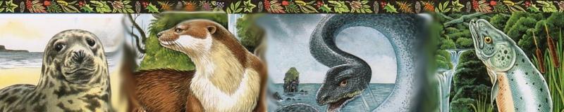 Les animaux selon le Culte Druide Oracle21