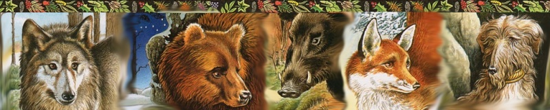 Les animaux selon le Culte Druide Oracle22
