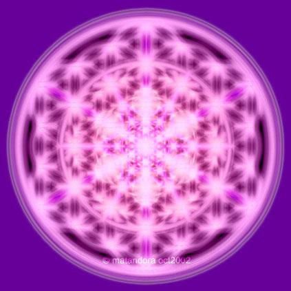 La Flamme Violette dans votre vie Rosace10