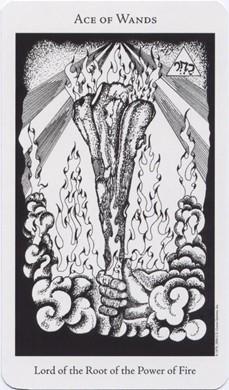 The Hermetic Tarot - Secret of the Golden Dawn Par Godfrey Dowson The_he11