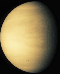 Le Codex Cospi Venus10