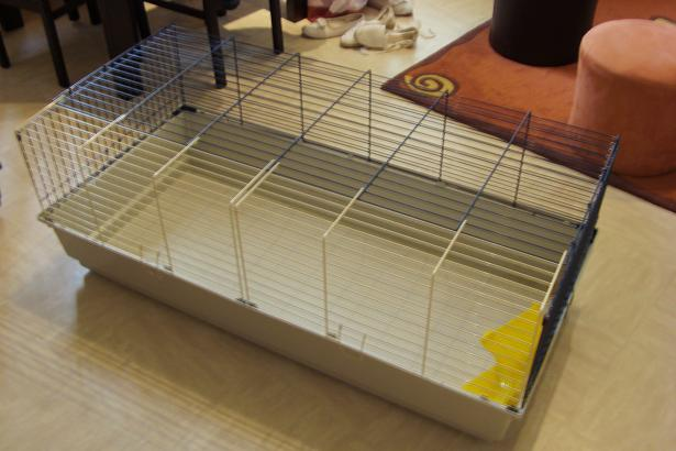 diego 5/6 mois recherche une famille (lapin) Cage_110
