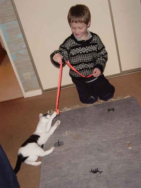 Mina, 6 mois, blanche et noire Mina_a10