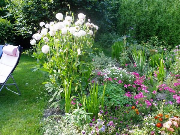 Le jardin de Joséphine.. Jardin11