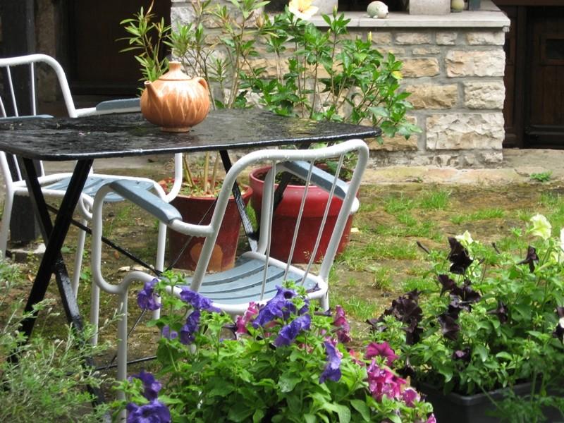 mon jardin pluvieux Img_4432