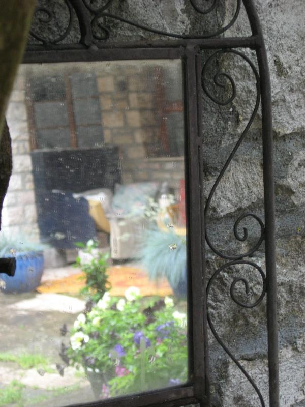mon jardin pluvieux Img_4435