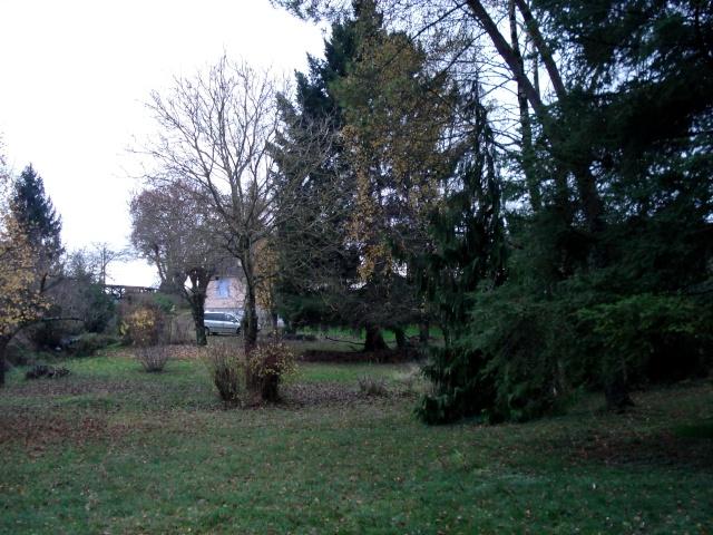 le nouveau jardin de Giroflée - Page 3 511_0217