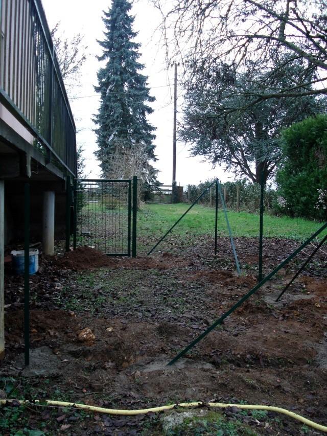 le nouveau jardin de Giroflée 511_2410