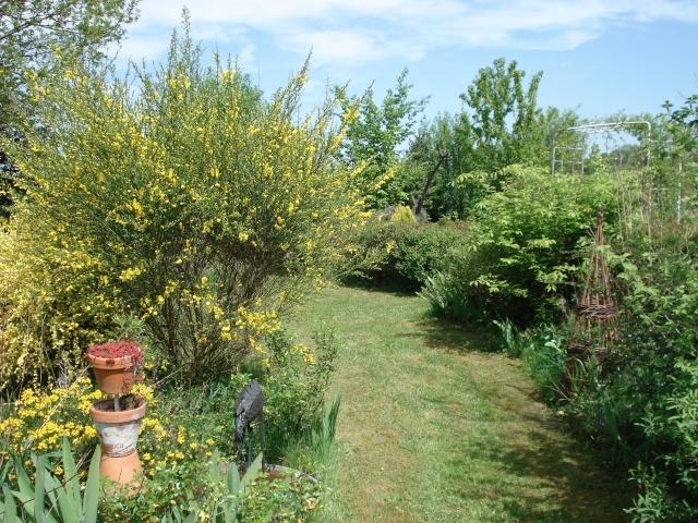 le jardin de Giroflée 2 - Page 6 6_mai_36