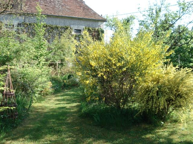 le jardin de Giroflée 2 - Page 6 8mai_020