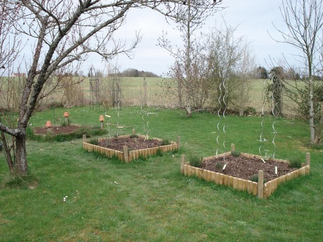 le jardin de Giroflée 2 Jardin26