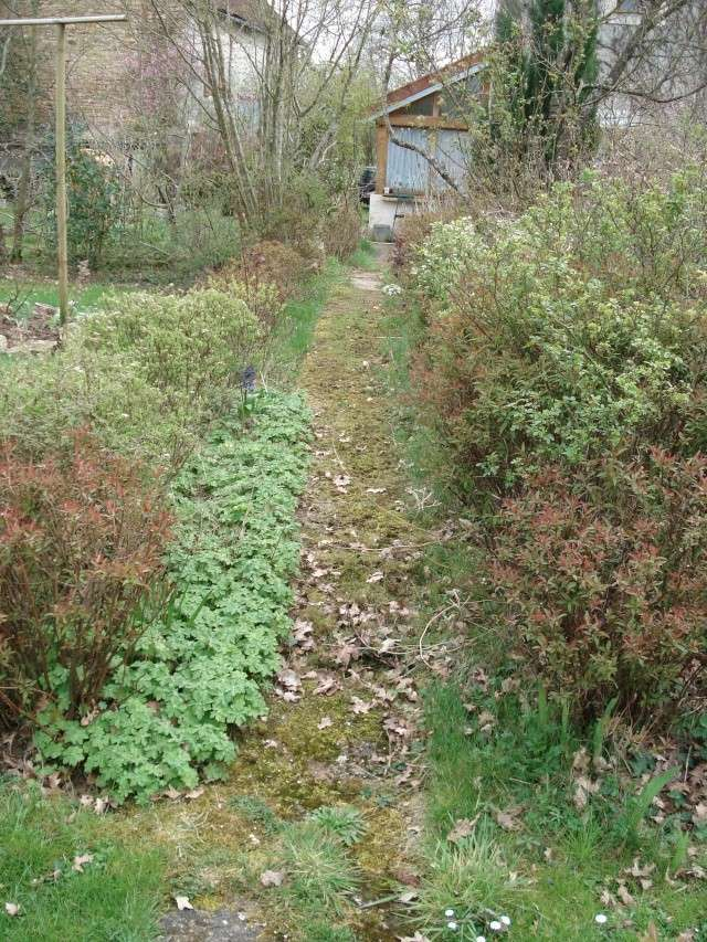 le jardin de Giroflée 2 Jardin47
