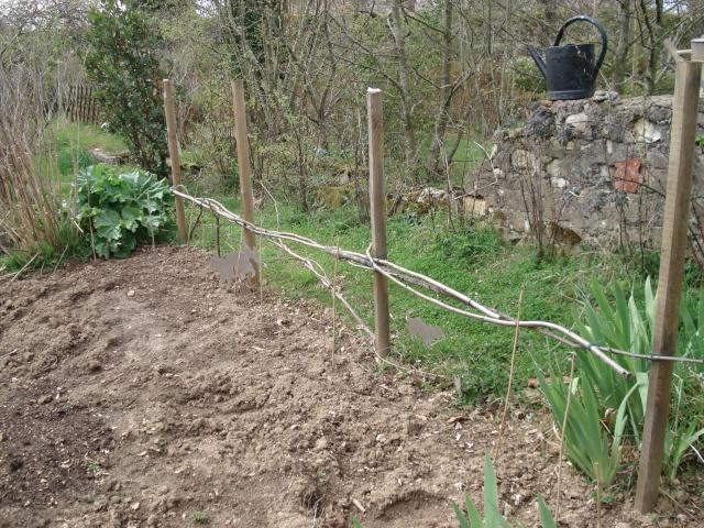 le jardin de Giroflée 2 Jardin67