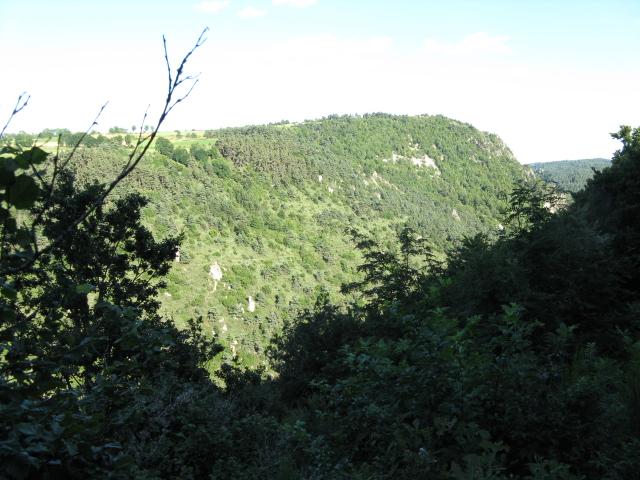 Rencontre sur l'Auvergne photos Page 7! - Page 5 Peche217