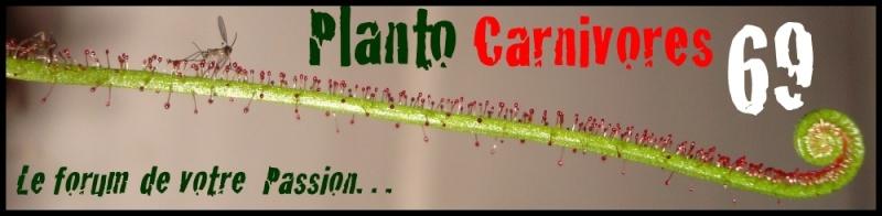 plantocarnivores69