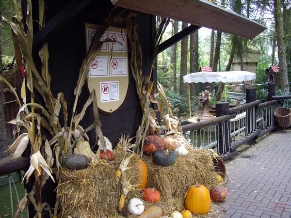 HoPa Schocktober le 9 octobre 2008 Annoto12