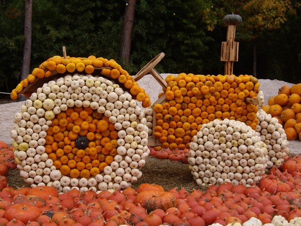 HoPa Schocktober le 9 octobre 2008 Hallo610