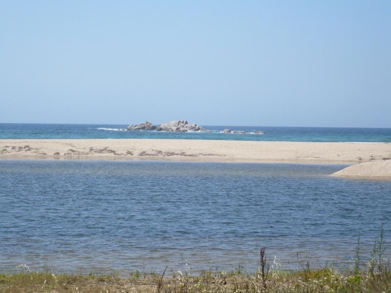 Corsica : Les JA sur l'Ile de Beauté ? - Page 8 P1010712