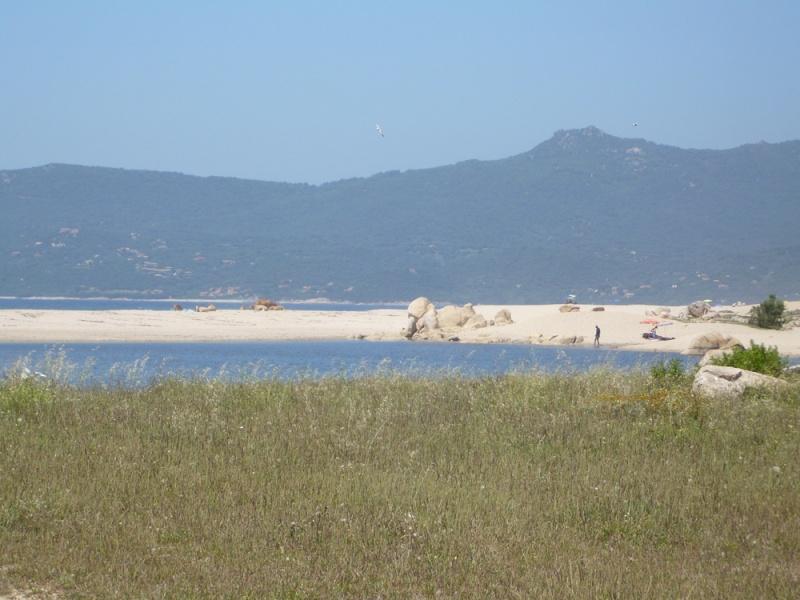 Corsica : Les JA sur l'Ile de Beauté ? - Page 8 P1010713