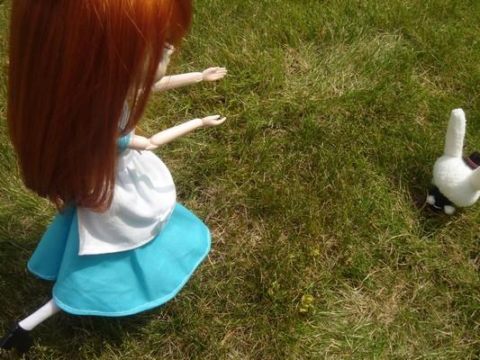 Pullip : Mes petits démons - Page 2 Alice_10