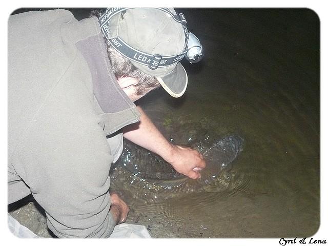 Vos journées de pêche 2008 ! - Page 5 P1020519