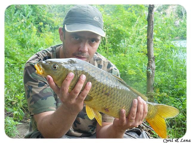 Vos journées de pêche 2008 ! - Page 5 P1020626