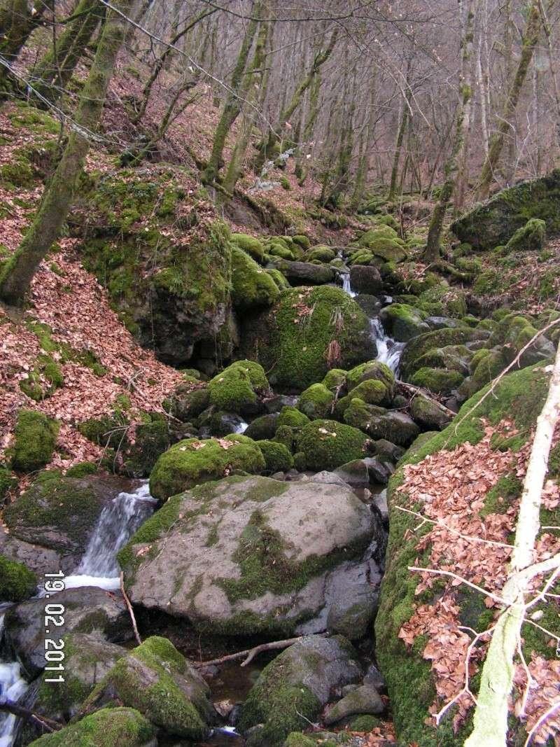Pépanie commune d'Anglards de Salers Pict0113