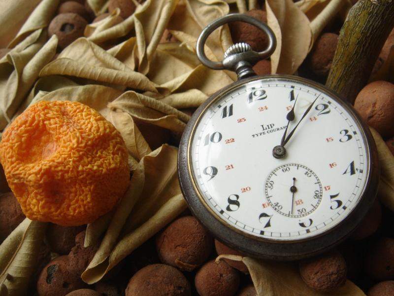 Où acheter une vieille montre à gousset (à un prix abordable)? Dsc01510