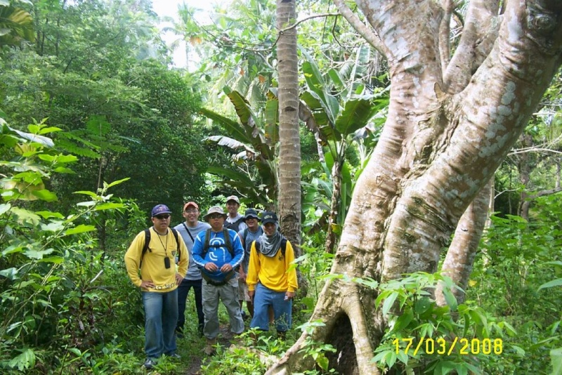Saka Kanaug Tree_310