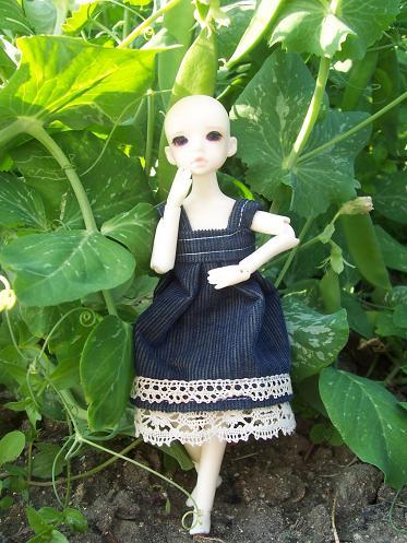 Ma couture pour Puki p3 !! ^^ 000_3219
