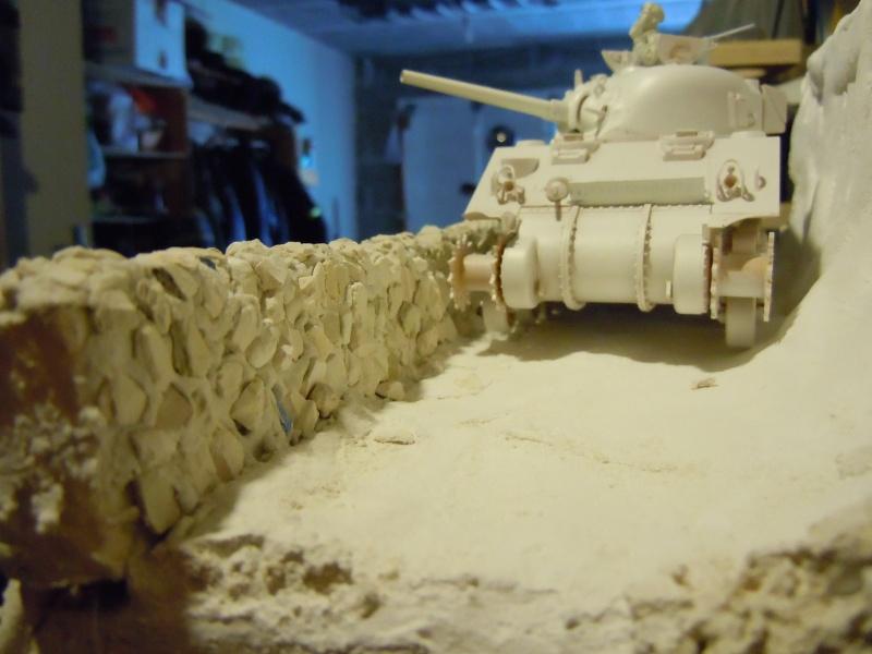 [1/35] Sherman Mk III kiwi Dscn1633