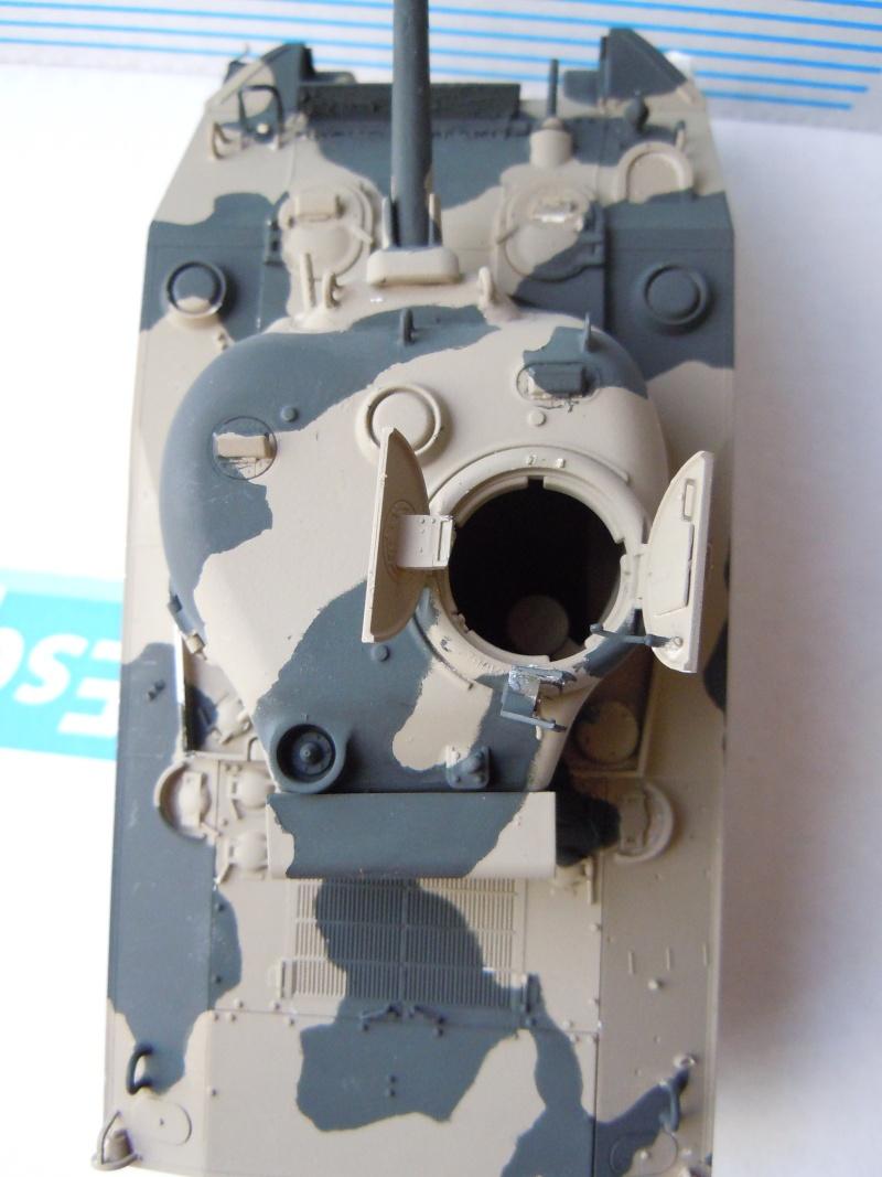 [1/35] Sherman Mk III kiwi Dscn1814