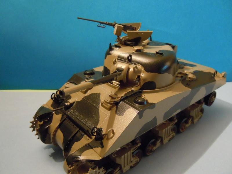 [1/35] Sherman Mk III kiwi Dscn1820