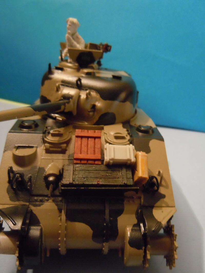 [1/35] Sherman Mk III kiwi Dscn1824