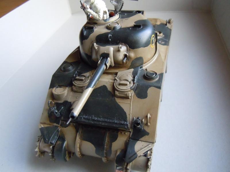 [1/35] Sherman Mk III kiwi - Page 2 Dscn2513