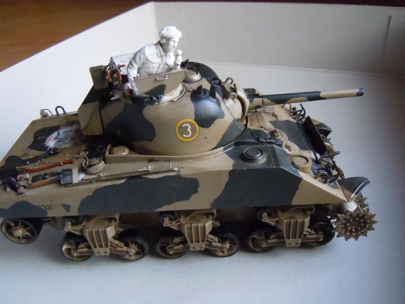 [1/35] Sherman Mk III kiwi - Page 2 Dscn2514